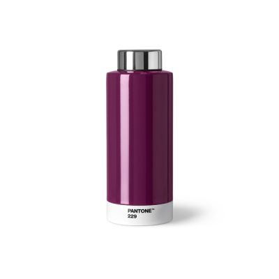 Pantone Steel Drinking Bottle - Aubergine 229