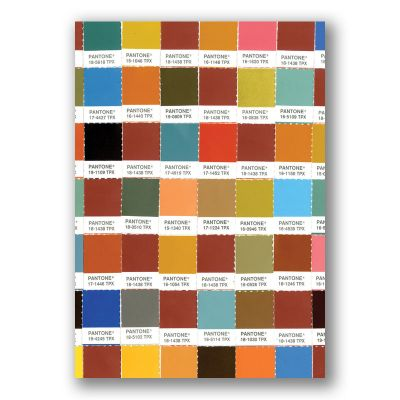 Pantone Chips Journal Earth Tones