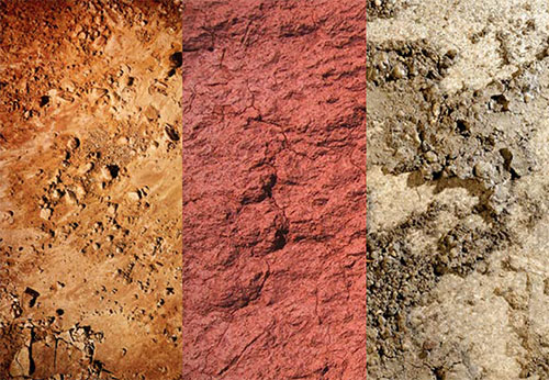 Munsell Soil Colour Charts Latest Revision