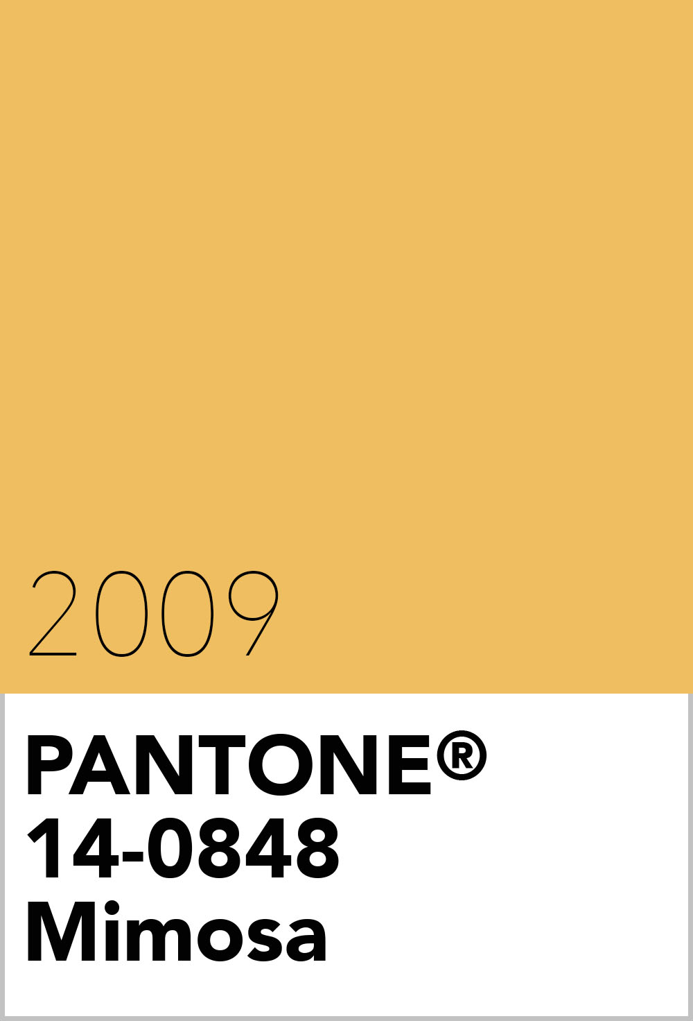 pantone colour of the year 2009